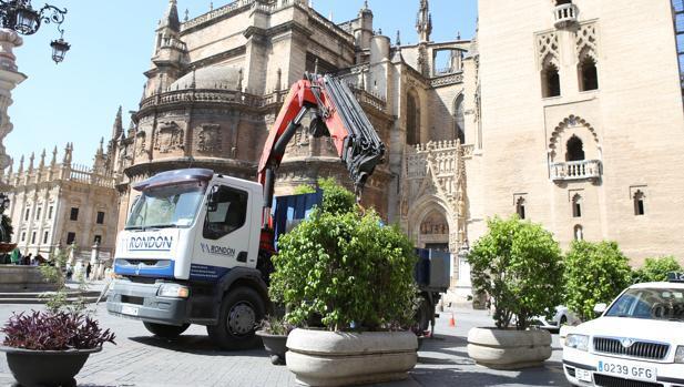 La Plaza Virgen de los Reyes también se protege con macetones de la amenaza terrorista