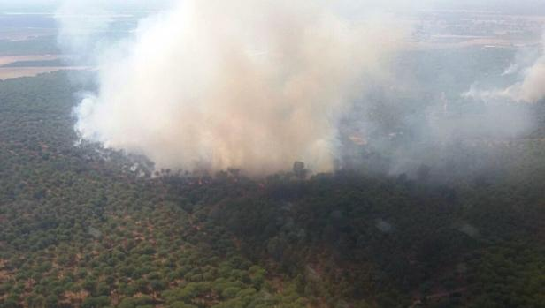 Declarado un incendio en el paraje natural de Dehesa Boyal de Villamanrique de la Condesa, cerca de Doñana