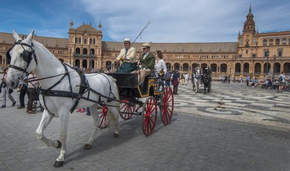Los coches de caballos dejarán de circular en Marbella en las horas de especial calor