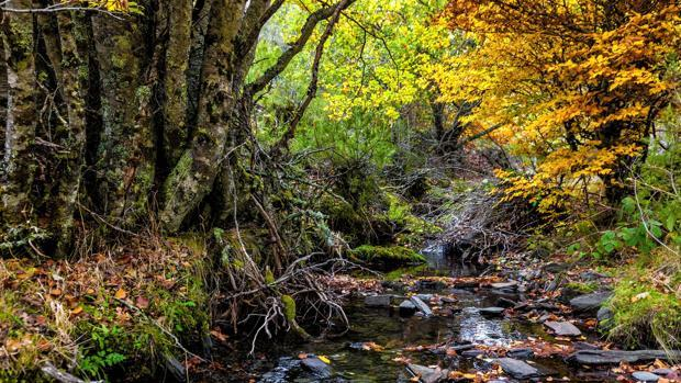 Siete paisajes naturales donde descubrir la mejor Castilla-La Mancha