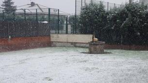 La nevada en Madrid, según nuestros lectores