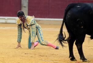 Cornada a Cayetano en Zaragoza: Imágenes del triunfo y la sangre del diestro