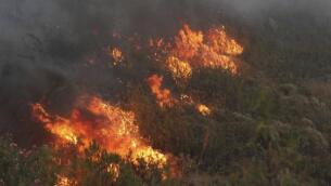 La lucha contra el incendio forestal de Riotinto, en imágenes