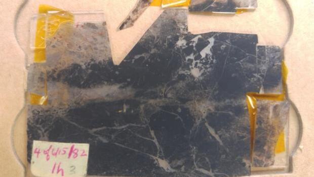 ¿Es esta la huella de vida más antigua de la Tierra?