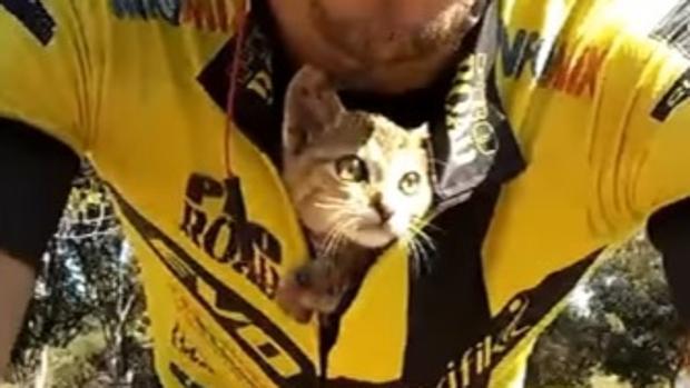 Un ciclista salva a un gatito y conmueve a las redes sociales