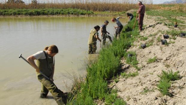 La Fundación BBVA galardona la conservación de la naturaleza