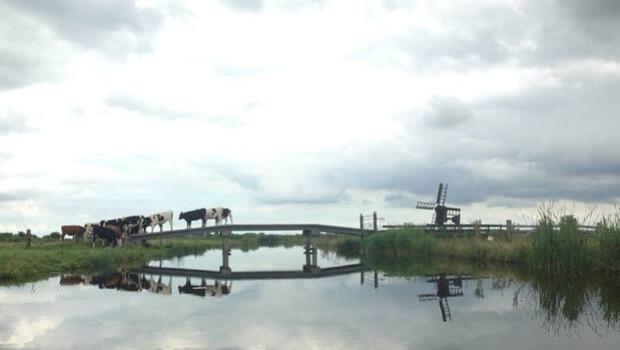 Así mantienen los pies secos los holandeses que viven entre 1 y 4,5 metros por debajo del nivel del mar
