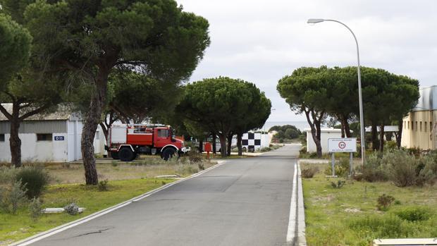 La doble desgracia de Moguer: el fuego de Doñana aviva la oposición de los ecologistas al proyecto CEUS