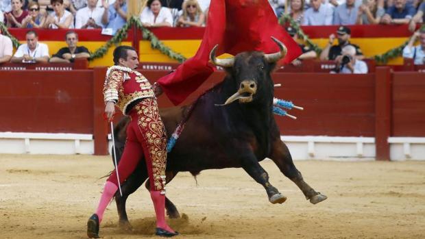 Alicante seguirá celebrando corridas de toros al abandonar el gobierno local Compromís