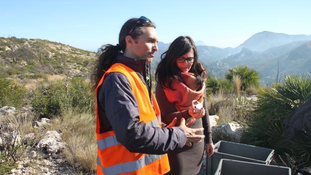 Hidraqua y Aquae amplían la reforestación de la zona calcinada por el incendio de Pego en 2015