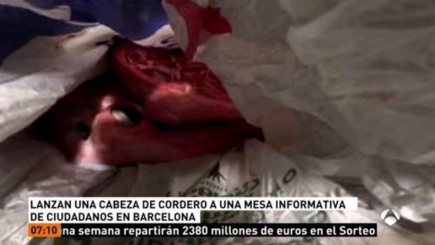 Dejan una cabeza de cordero en una mesa informativa de Ciudadanos en Barcelona