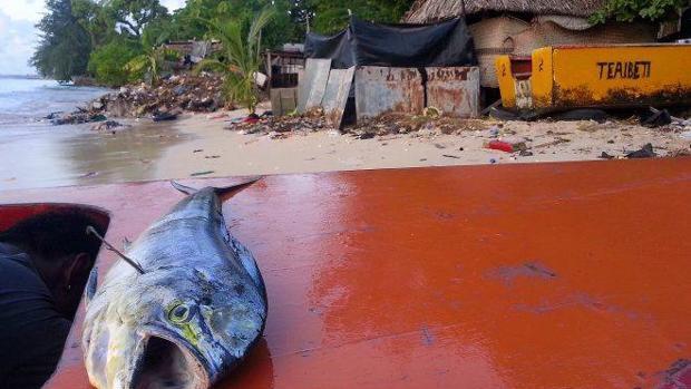 Las islas del Pacífico perderán hasta un 80% de las especies marinas hacia el final del siglo