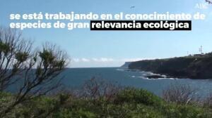 Proyecto Life - Restauración del río Miera