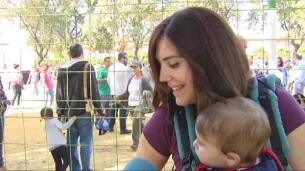 Sevilla celebra la Feria internacional del Burro