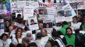 Argentina legaliza el uso medicinal de la marihuana