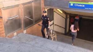 Entre 1.100 y 1.400 agentes de la Policía Nacional velarán por la seguridad del World Pride