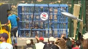 Rescatados trece animales del zoo de Aleppo