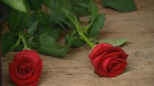 Palabras de amor inundan La Rambla