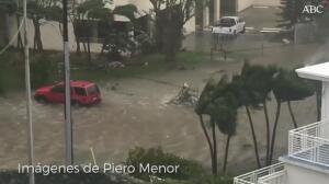 Vea como, milagrosamente, se salva un coche del huracán Irma