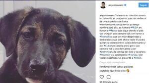 Alejandro Sanz amplía su familia