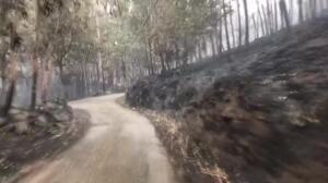 Óscar Pereiro cuelga un desolador vídeo de las zonas afectadas por los incendios de Galicia