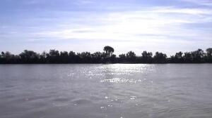 Preocupación en Coria del Río por vertidos tóxicos