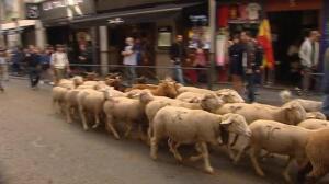 Centenares de ovejas toman las calles de Madrid