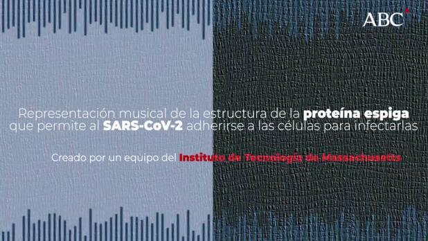 Noticias de Virus - ABC.es